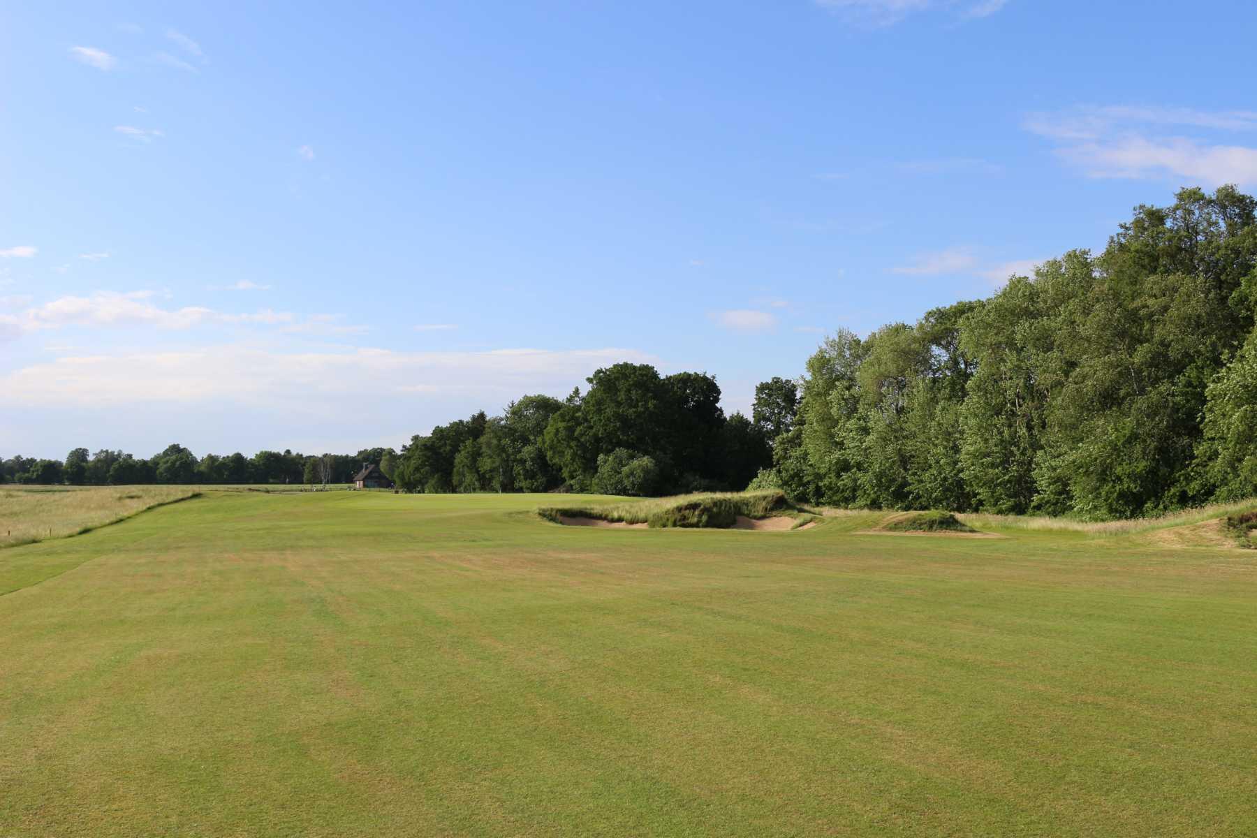 grüne Wiesen am Golfplatz Lilienthal